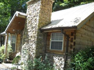 Bear Footn' - Pigeon Forge vacation rentals