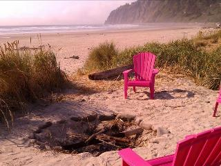 Oceanfront Cottage - Manzanita vacation rentals