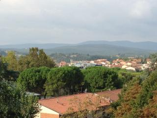 The Chessboard - Siena vacation rentals