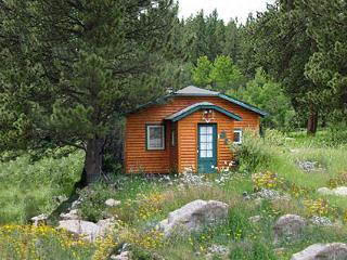 Willow Creek Cottage - Allenspark vacation rentals