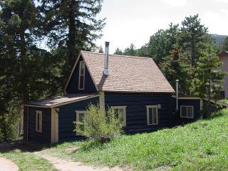 Blue Bark Cottage - Almont vacation rentals