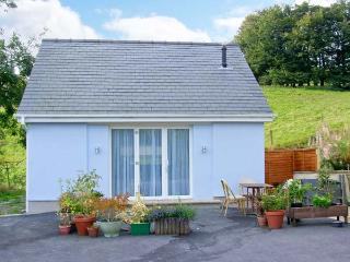 TY TWT romantic retreat, fabulous countryside in Ponterwyd Ref 23056 - Ceredigion vacation rentals