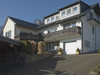 LLAG Luxury Vacation Apartment in Warstein - 106013 sqft, Infrared cabin, WiFi (# 2540) - Bad Wünnenberg vacation rentals