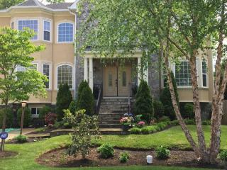GORGEOUS NEW VICTORIAN HOUSE WITH 7 BEDROOMS - Annandale vacation rentals
