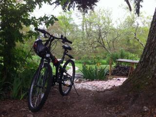 Iris Meadow Cottage - Gardonne vacation rentals