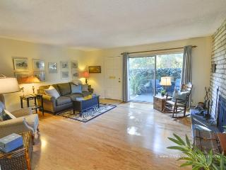 Del Mar Retreat - Solana Beach vacation rentals