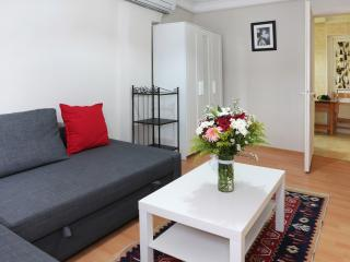Sultanahmet -1 BD Aparment just near blue mosque - Istanbul vacation rentals