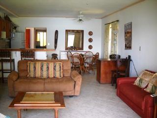 Flamingo Marina Resort Condo #522 - Playa Flamingo vacation rentals