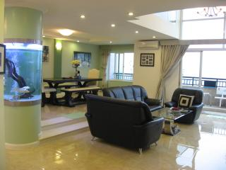 USA Model Waterfront PENTHOUSE (252m2) - Ho Chi Minh City vacation rentals