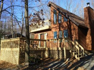 Poconos House - Blakeslee vacation rentals