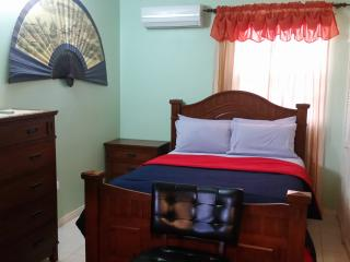 Elegant, Cozy and Comfortable Apartment 865 2304 - Kingston vacation rentals