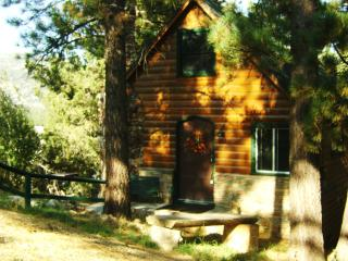 Storybook Cabin With Hot Tub..9.7-9.10..$77.per nt - Big Bear Lake vacation rentals