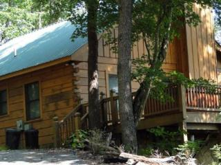 Holly Hollow - charming pet friendly vacation cabin offering great value and fantastic views - Cherry Log vacation rentals