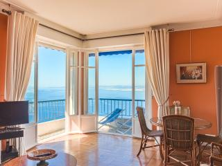 Nice French Riviera Most spectacular Sea views 2bd - Nice vacation rentals
