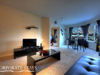 Ottawa Suave 1BR Holiday Rental - Ottawa vacation rentals