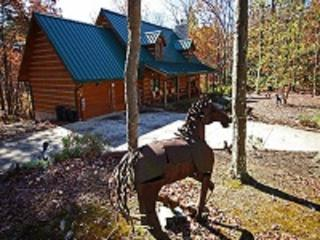 Rusty Horse Lodge - Ohio vacation rentals