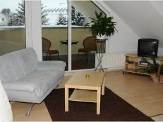 Vacation Apartment in Herzogenaurach - 484 sqft, internet and parking (# 1214) - Nuremberg vacation rentals