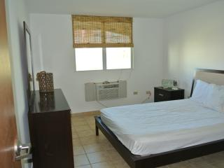#8 Beautiful 2BR, 2BA Apartment - Jobos Beach - Isabela vacation rentals