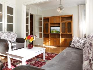 2 BD apartment near bule mosque - Istanbul vacation rentals