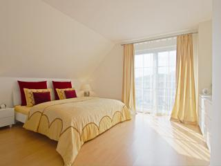 2558 LUXURY HOME - Hannover vacation rentals