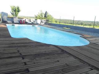 Le grand saint Paul 2550 - Rognes vacation rentals