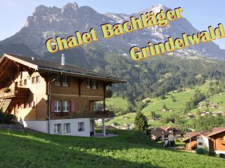 Chalet Bachläger - Grindelwald vacation rentals
