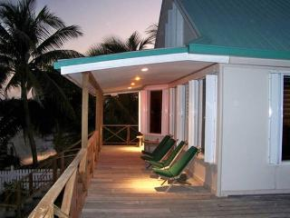 Iguana House 3B/3B Ocean Front Beach House - San Pedro vacation rentals