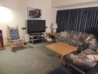 Bear Creek-C15 - Stratton and Bromley Ski Areas vacation rentals