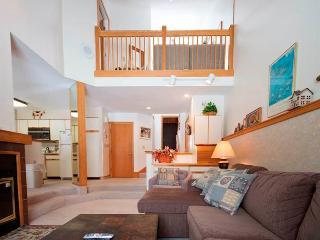 The Woods Resort & Spa Townhouse B3 - Killington vacation rentals