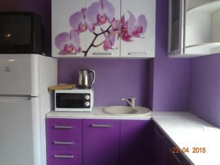 apartament - Tver vacation rentals