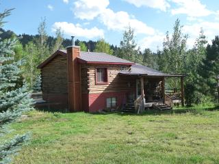 Cozy mountain log cabin with Longs Peak View - Laporte vacation rentals