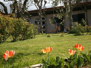 DUE LUNE COUNTRY HOUSE B&B - Pietrasanta vacation rentals