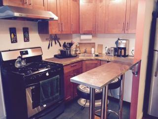 Fantastic and Modern Ensuite in Chinatown - New York City vacation rentals