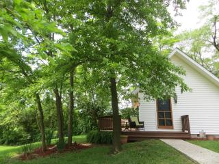 Hawksbill Cottage - Basye vacation rentals