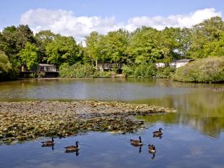 Haytor Lodge, 9 Indio Lake located in Bovey Tracey, Devon - Bovey Tracey vacation rentals
