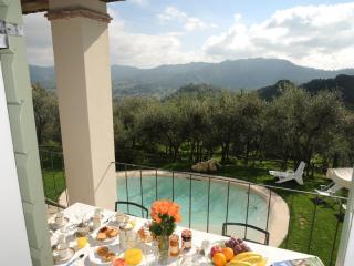 Villa Camaiore 7 a 9 persone - Camaiore vacation rentals