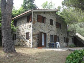 the Gecko  apartment - Cinque Terre vacation rentals
