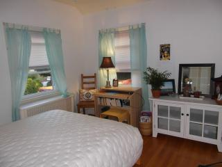 Guest Nest - Cheerful Guest Room & Private Bath - Washington DC vacation rentals