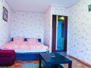 One bedroom with great city view - Nizhniy Novgorod vacation rentals