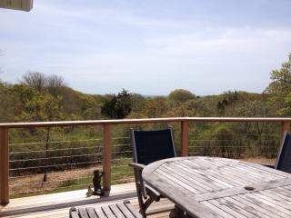 Chilmark - 4 bedroom with distant waterviews 125237 - Chilmark vacation rentals