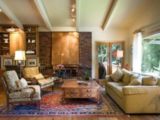 Silver Kingdom - Aspen vacation rentals