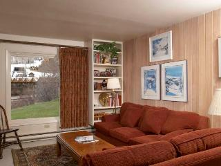 Woodbridge 27A - Snowmass vacation rentals