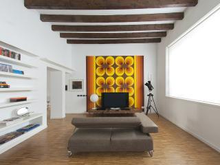 Openspace Milano Expo - Pogliano Milanese vacation rentals