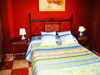 Apartments Drago 13 - Icod de los Vinos vacation rentals