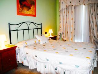 Apartments Drago 24 - Icod de los Vinos vacation rentals