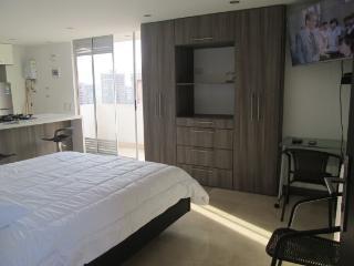 estudio frontera de lujo - Medellin vacation rentals