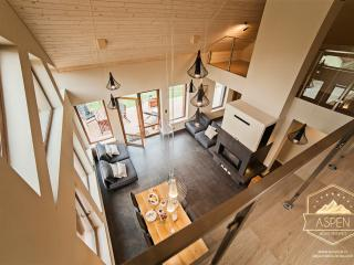 ASPEN Deluxe Residence: Mountain and Lake View - Miedzybrodzie Bialskie vacation rentals