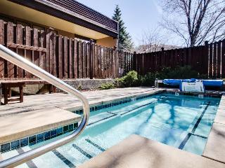 Oasis at the Snowflower - Steamboat Springs vacation rentals