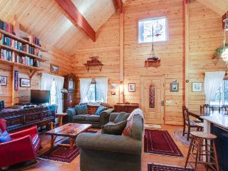 Family-friendly lodge with bikes, jetted tub, & ramp access - South Lake Tahoe vacation rentals