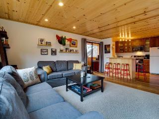 Cowlin Condo - Truckee vacation rentals
